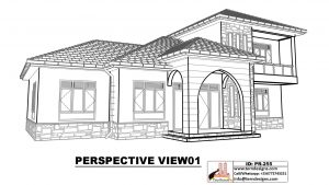 Perspective-View01